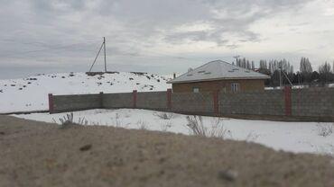 продам опилки в Кыргызстан: Продам соток
