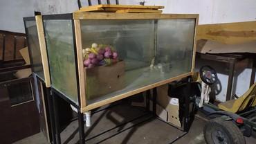 со всеми комплектующими в Кыргызстан: Продаю аквариумы для магазинов. Со сливом в канализацию. Есть 3 шт. 2