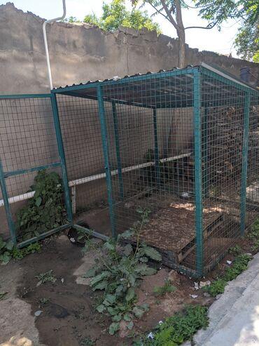 Зоотовары - Кыргызстан: Продаю вольер!!!Размер 2*2Подойдет для всех собак. Крытый, из хорошего