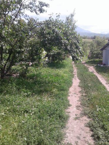 Продаётся кашар село Беловодск верхней зоне, сад огород вода пастбища