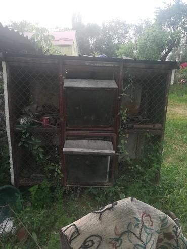 Продаю клетку для кроликов город Кант высота 1.5 ширина 60,длина 1.5  в Бишкек