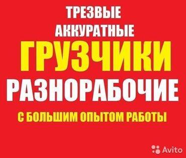 индюки биг 6 купить в Кыргызстан: Подсобники, разнорабочие, рабочиерабочая сила,чернорабочие