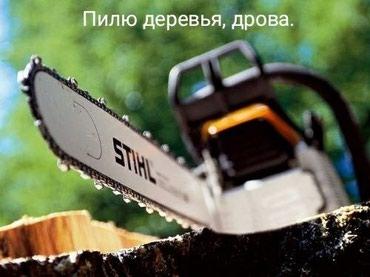 Пилю дрова, деревья в Бишкек