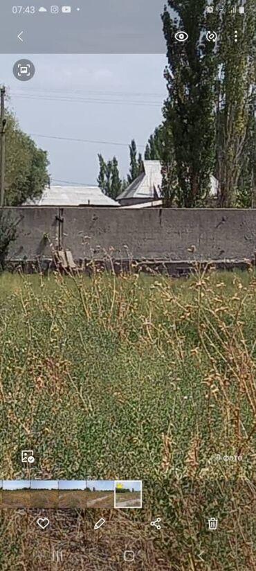 продаю участок in Кыргызстан   ПРОДАЖА УЧАСТКОВ: 51 соток, Для строительства, Хозяин