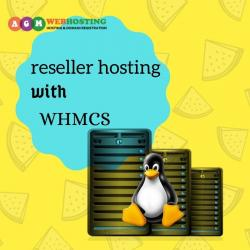 Reseller hosting allows you to create sub-accounts within your hosting in Kathmandu