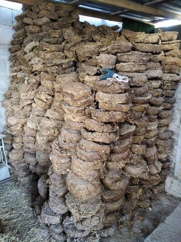 Все для дома и сада - Сокулук: Навоз, тезек, дрова Ак-Орго, 1 мешок