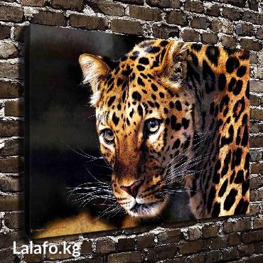 ad-image-37021184