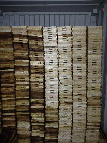 Продаю суш рамки рут рута для пчёл  18 км от бишкека. Пчёлы здоровые