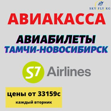 билеты ав в Кыргызстан: АВИАБИЛЕТЫ В НОВОСИБИРСК ПО ЛУЧШИМ ЦЕНАМ! БИЛЕТЫ В ГОРОДА РОССИИ С