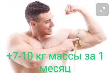 помогу деньгами бишкек in Кыргызстан | ИНТЕРНЕТ РЕКЛАМА: 100% набор веса! Помогу набрать массу тела! Спортивное питание. Набор