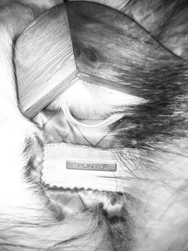 Mex naturalniy,jilet zamoklu kapyushenlu,veziyeti yaxshidir,razmer