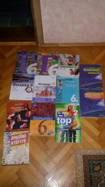 Knjige - Srbija: Knjige za 6 razred. knjige su u Kraljevo