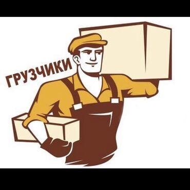 cube 29 в Кыргызстан: Требуется Грузчик в Оптовый Магазин. обед включён  Первый месяц 12т по