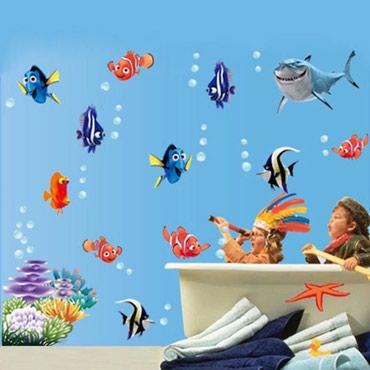 Bakı şəhərində Divar yapışqanı akvarium balıqları .