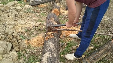 бензопила texa в Кыргызстан: Бензопила пилим, валим дрова