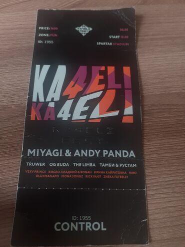 Билет на ka4elifest   фан зона