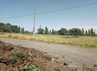Недвижимость - Гавриловка: 30 соток, Для сельского хозяйства, Красная книга