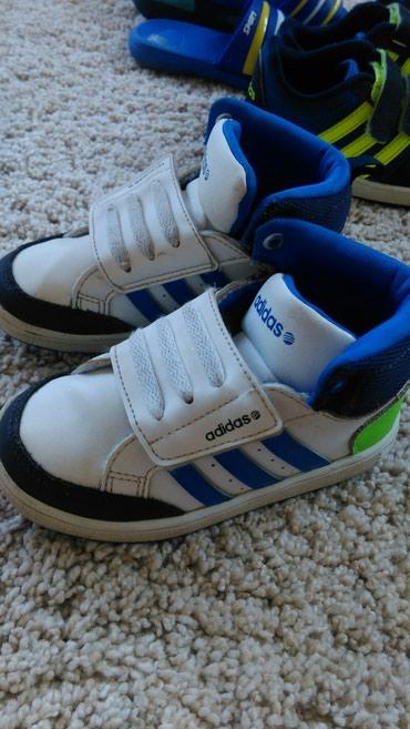 Adidas neo,kao nove,24 br - Belgrade