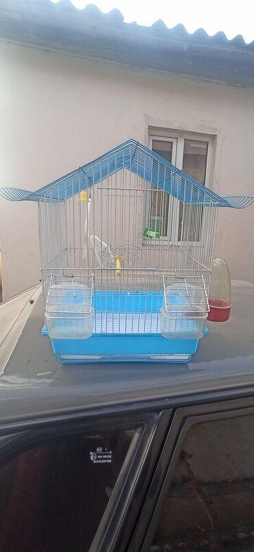 Продаю клетку для попугаев