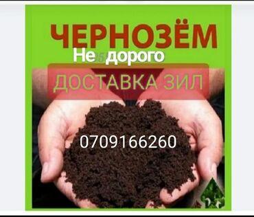 7146 объявлений: Чернозём чернозем чернозём чернозем чернозём чернозем чернозём