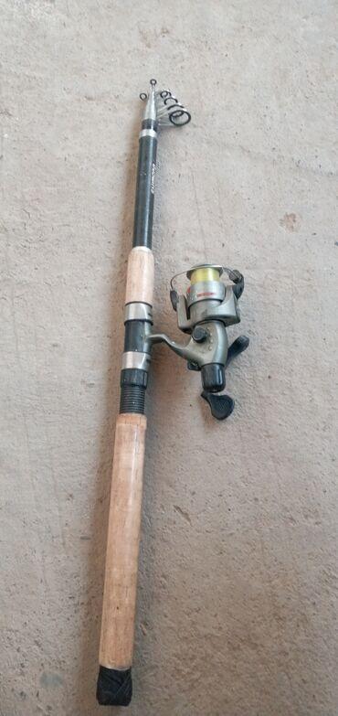 1054 объявлений: Охота и рыбалка