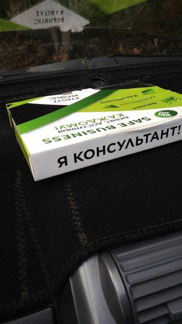 Кыргызстанда ачылган ишеничтуу компания Сейф бизнес, Жумасына айлыгы в Ош