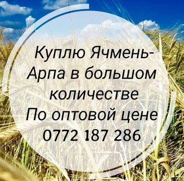 ad-image-48889786