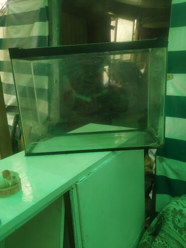 Продаю аквариум, 35см. Прекрасно подойдёт для рыб, ящериц, пауков и