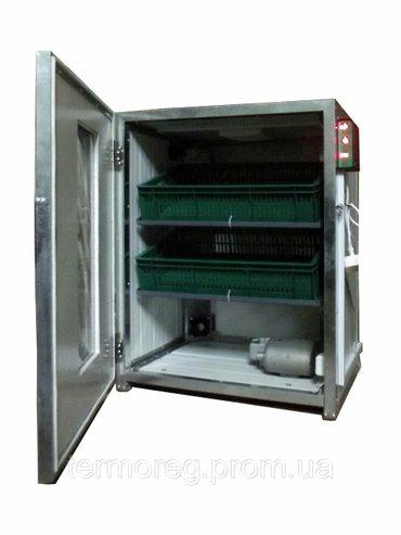 Lənkəran şəhərində Şəkildəki  inkibatora oxşar inkubator satilir,lənkərandadir,avtomatikd