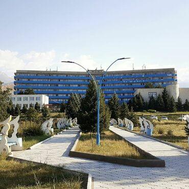 Добро пожаловать в один из лучших здравниц Иссык- Кульского
