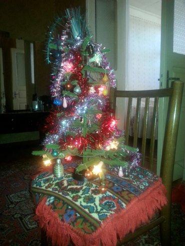 Gəncə şəhərində Şam (yolka) ağacı işıqlar oyuncaqlarla biryerdə