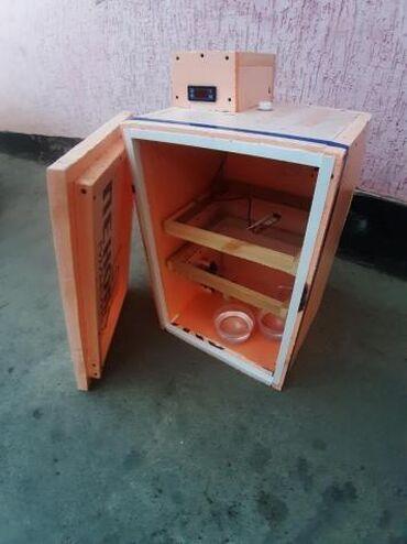 ИНКУБАТОР!!! Продаются разные виды инкубаторов На ваше усмотрение От