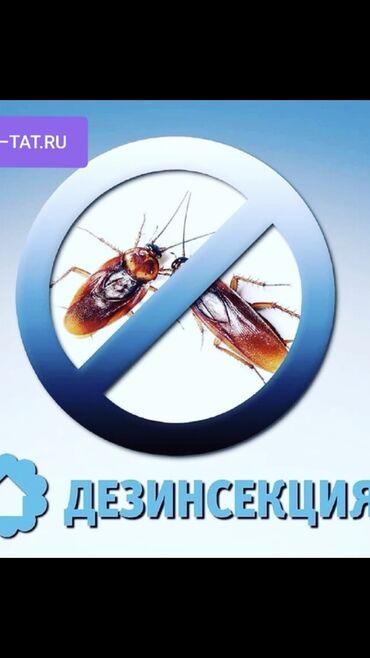 искусственная трава бишкек in Кыргызстан | ГРУЗОВЫЕ ПЕРЕВОЗКИ: Дезинфекция, дезинсекция | Клопы, Блохи, Тараканы | Транспорт, Офисы, Квартиры