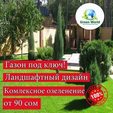 сеем газон бишкек в Кыргызстан: Газон, автополив, ландшафтный дизайн озеленение территории под ключ