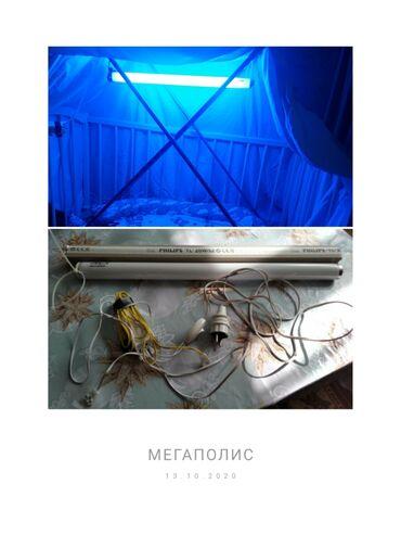 для новорожденных в Кыргызстан: Ультрафиолетовая лампа от желтушки для новорожденных. Отличны вариант
