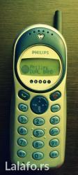 Philips db - Loznica