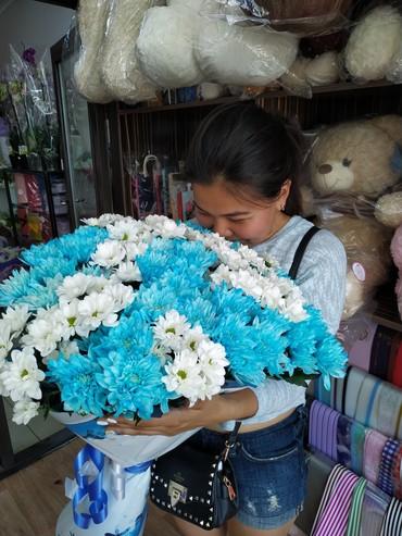 сортовой цикламен в Кыргызстан: Цветы разных сортов и цвета!!!по выгодной для вас цене