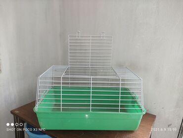 Морские свинки - Кыргызстан: Клетка для морской свинки или кролика