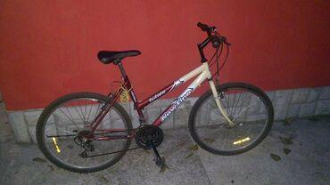 Manchester city - Srbija: Cyclestar NewLine City bike*Italijanski*Shimano menjač*V-brake kočnice