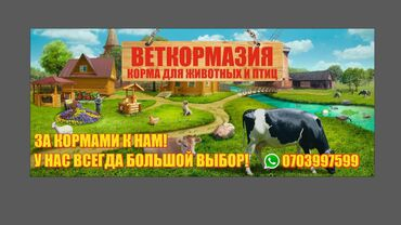 рынок животных в Кыргызстан: Специализированные корма для сельхоз животных по оптовой цене в розниц