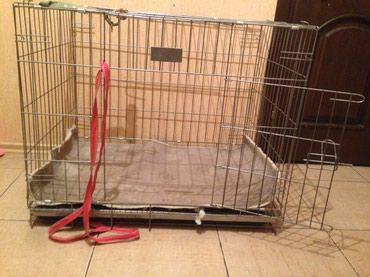 Клетка для собаки среднего размера. в Бишкек