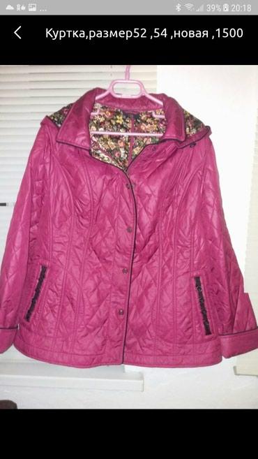 Куртка Деми,новая,размер 52,54 в Кок-Ой