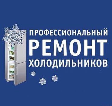 промышленная соковыжималка бишкек in Кыргызстан   СОКОВЫЖИМАЛКИ: Ремонт   Холодильники, морозильные камеры   С гарантией, С выездом на дом