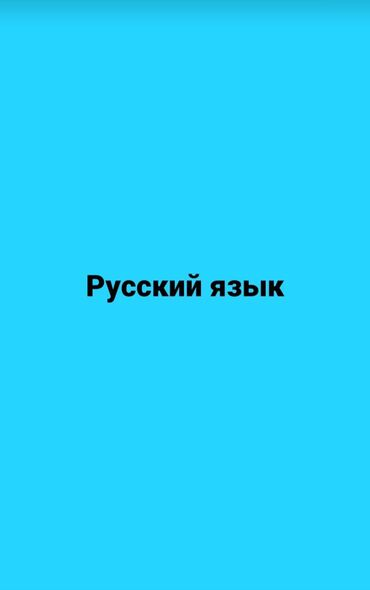 Курсы русского языка 6 раз в неделю