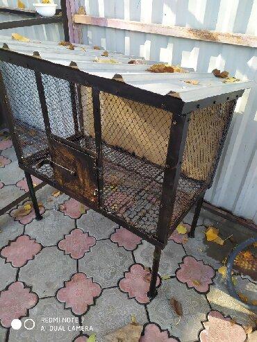 Зоотовары - Кыргызстан: Продаю крольчатник