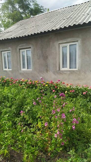 Недвижимость - Александровка: 35 кв. м 2 комнаты, Забор, огорожен