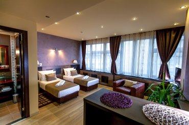 Aparthotel, amarilis 717, 418m2, vlasnik. - Beograd