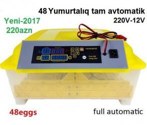 Стеновые панели - Азербайджан: Tam yeni / 48 yumurtalıq tam avtomatik. описание: высокое качество