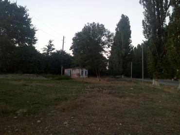 nabran - Azərbaycan: Satış 14 sot Kənd təsərrüfatı mülkiyyətçidən