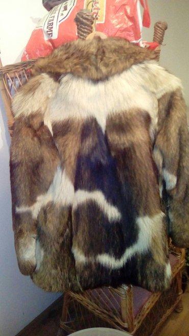 Pravo krzno, u odličnom stanju, vel. 36_38, kratka bunda, ledja 53 - Smederevo